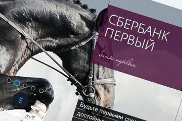 черная лошадь с наездником