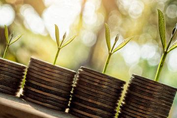 ростки прорастают из монет
